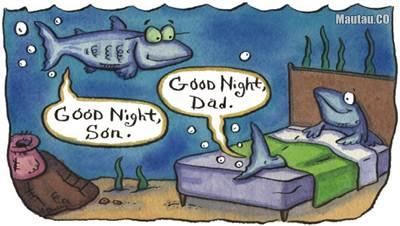 ikan juga tidur
